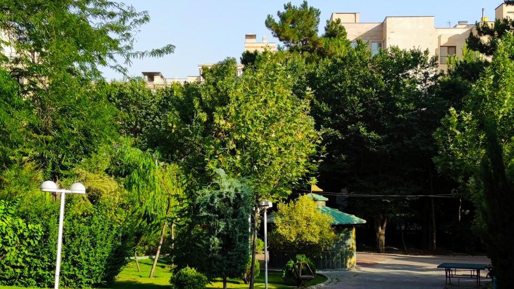 بوستان نصر